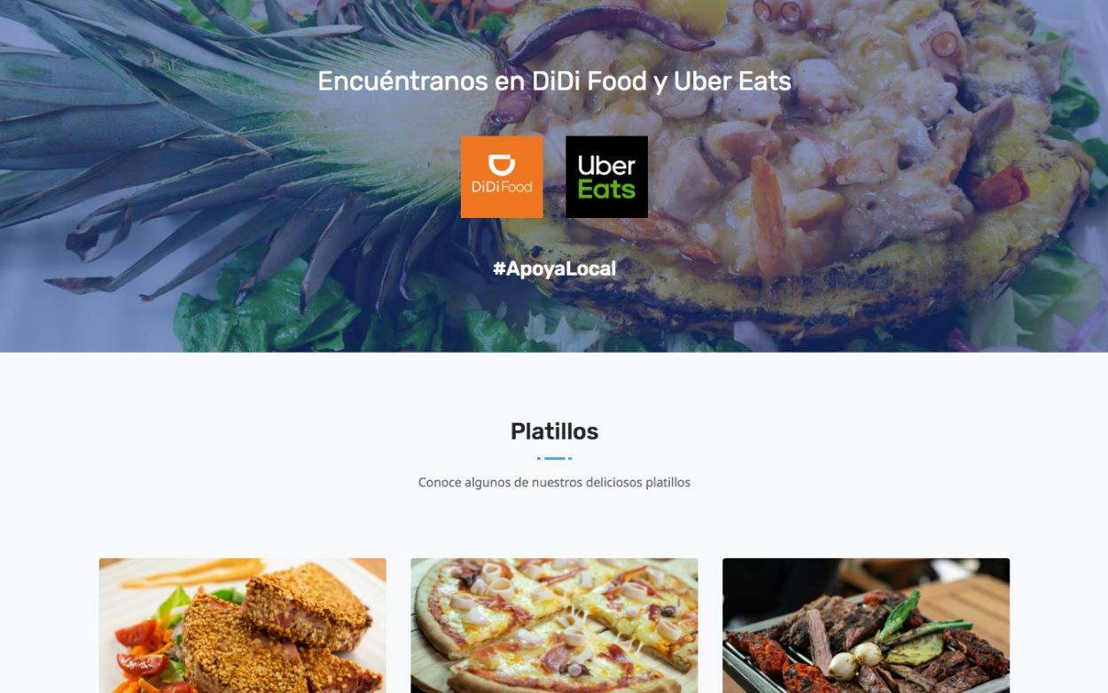 Desarrollo web, aplicaciones web - Interactivapp.mx